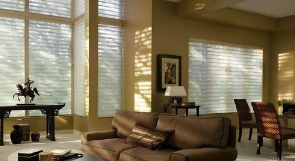 image of silhouette shades
